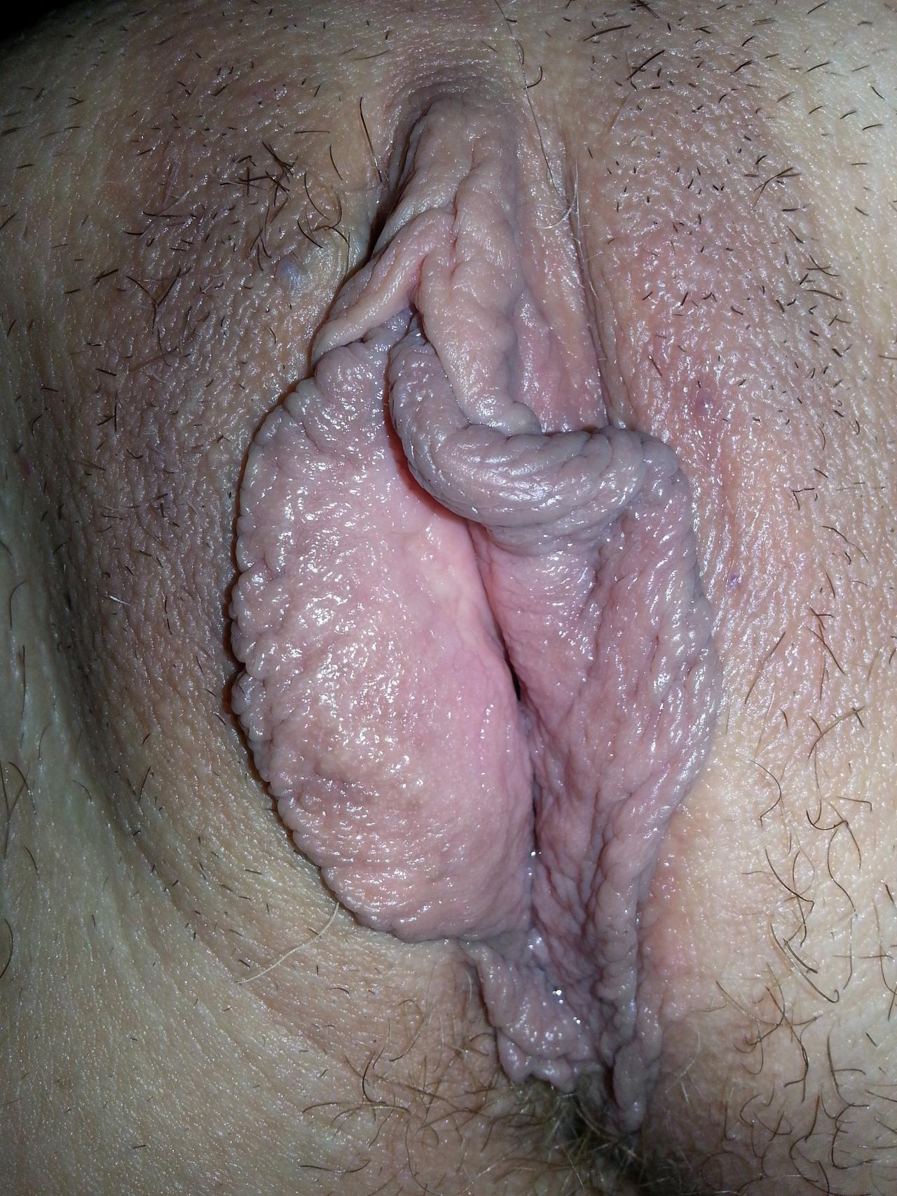 sexsfun kut met grote schaamlippen